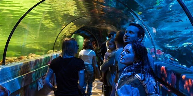 SEA LIFE Brighton - Student tickets for £9.60